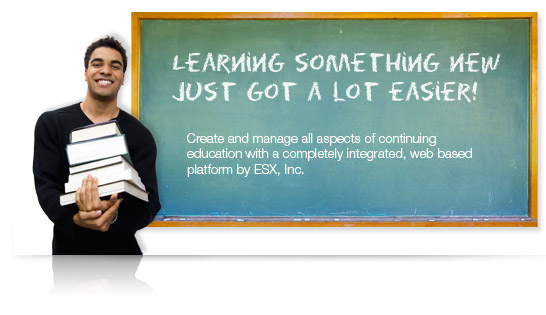 integrated language skills support for writing an essay