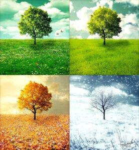 Cinta di Empat Musim